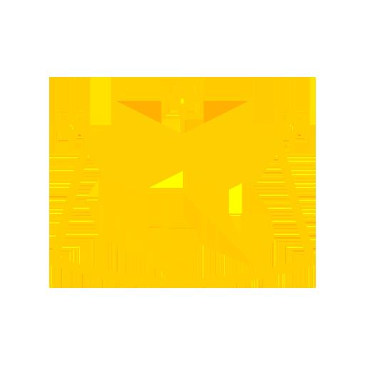 icone pare-brise